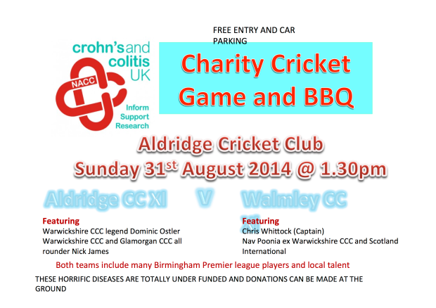 charity cricket game