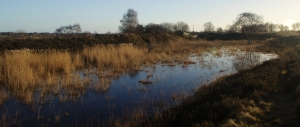 chasewater outfall